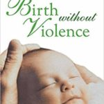 Cover for Birth Without Violence